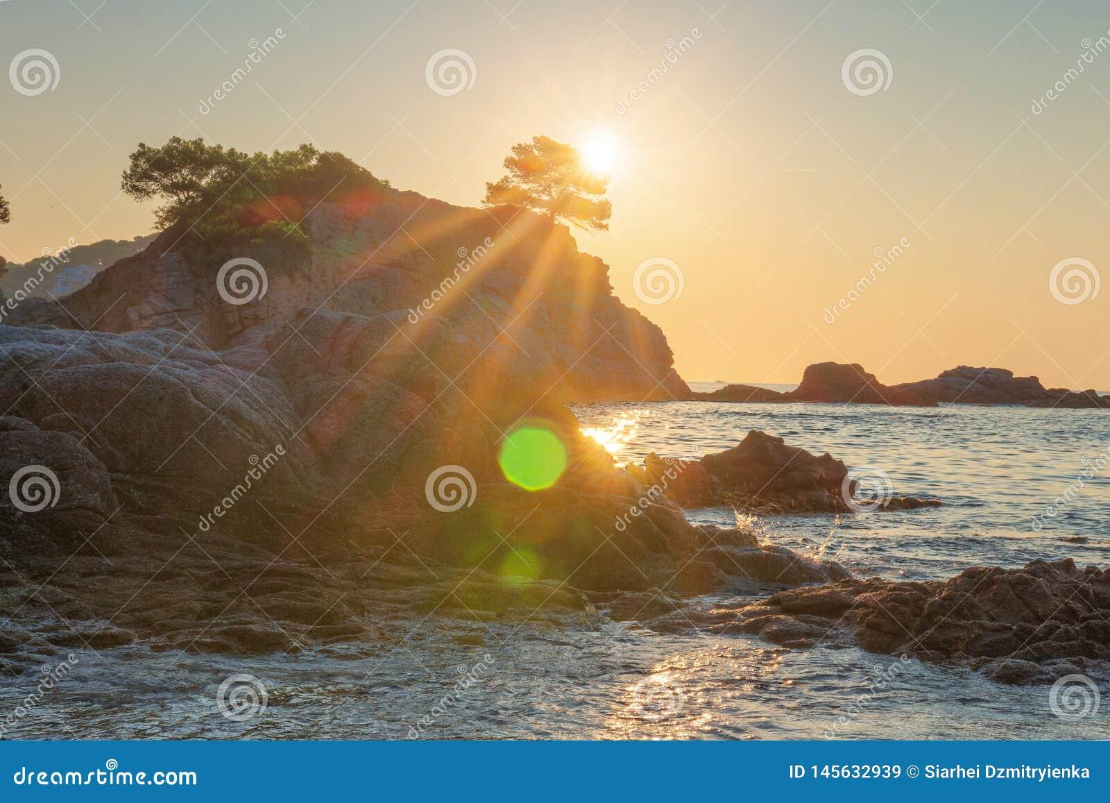 Alba luminosa sulla spiaggia del mare a Lloret de Mar Esponga al sole il lustro sopra la scogliera rocciosa in spiaggia di Costa