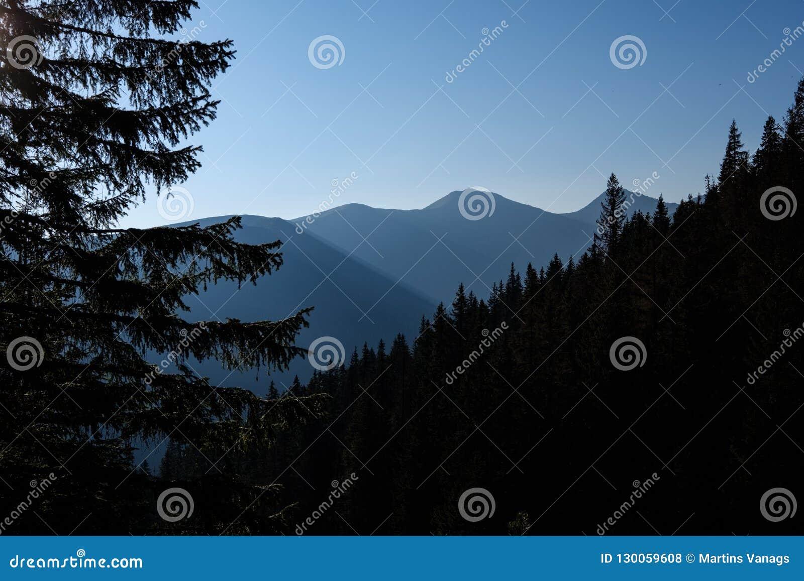 Alba nebbiosa in montagne slovacche di Tatra con i vicoli leggeri nella f