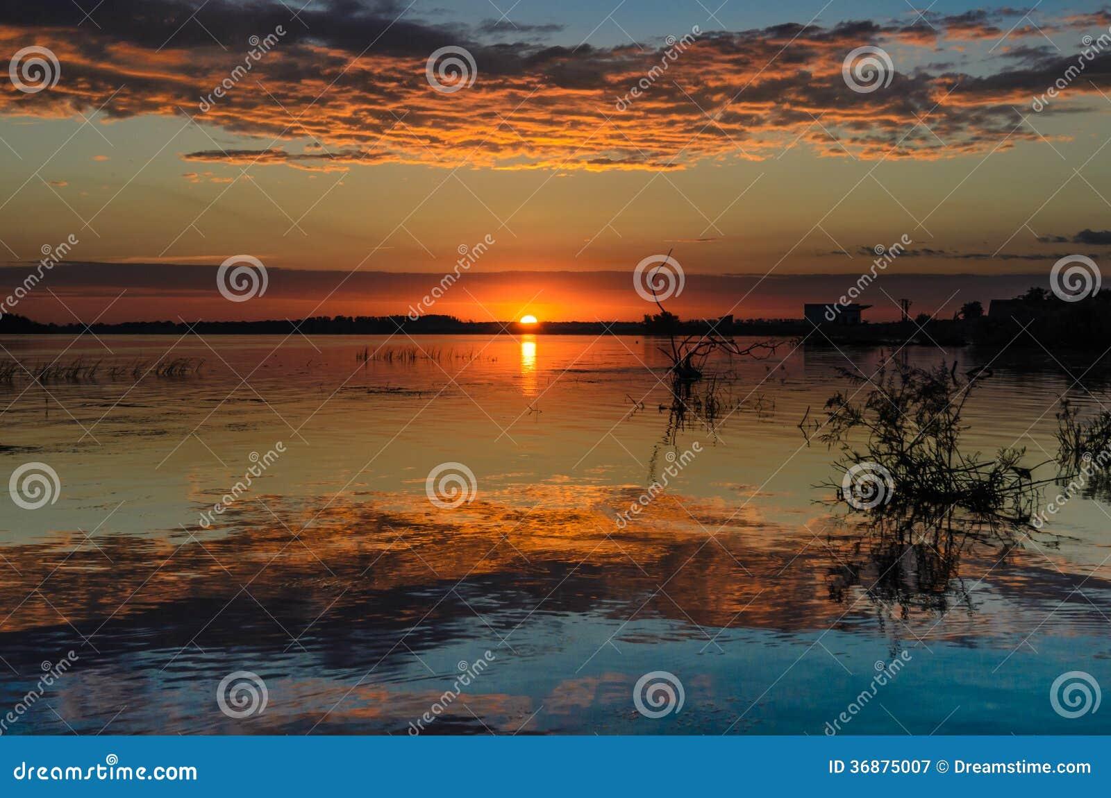 Download Alba nel delta di Danubio immagine stock. Immagine di blueish - 36875007