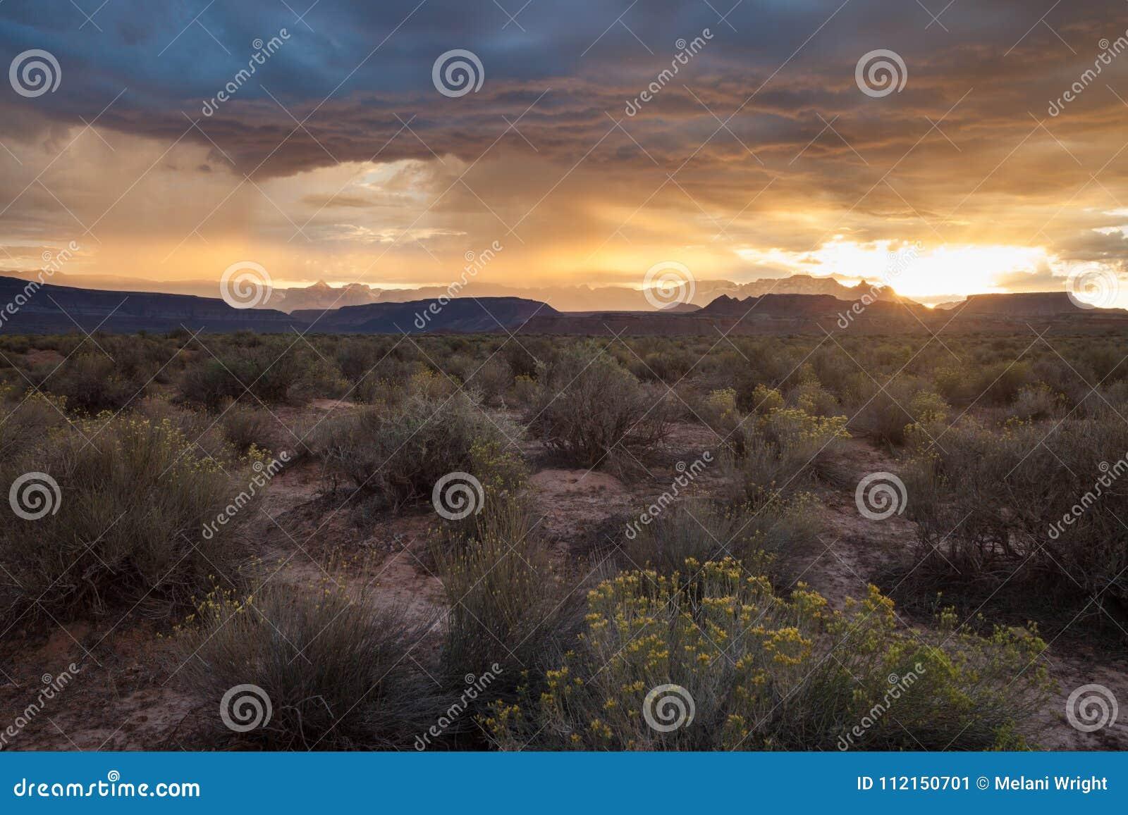 Alba nel deserto di sud-ovest del ` s dell Utah