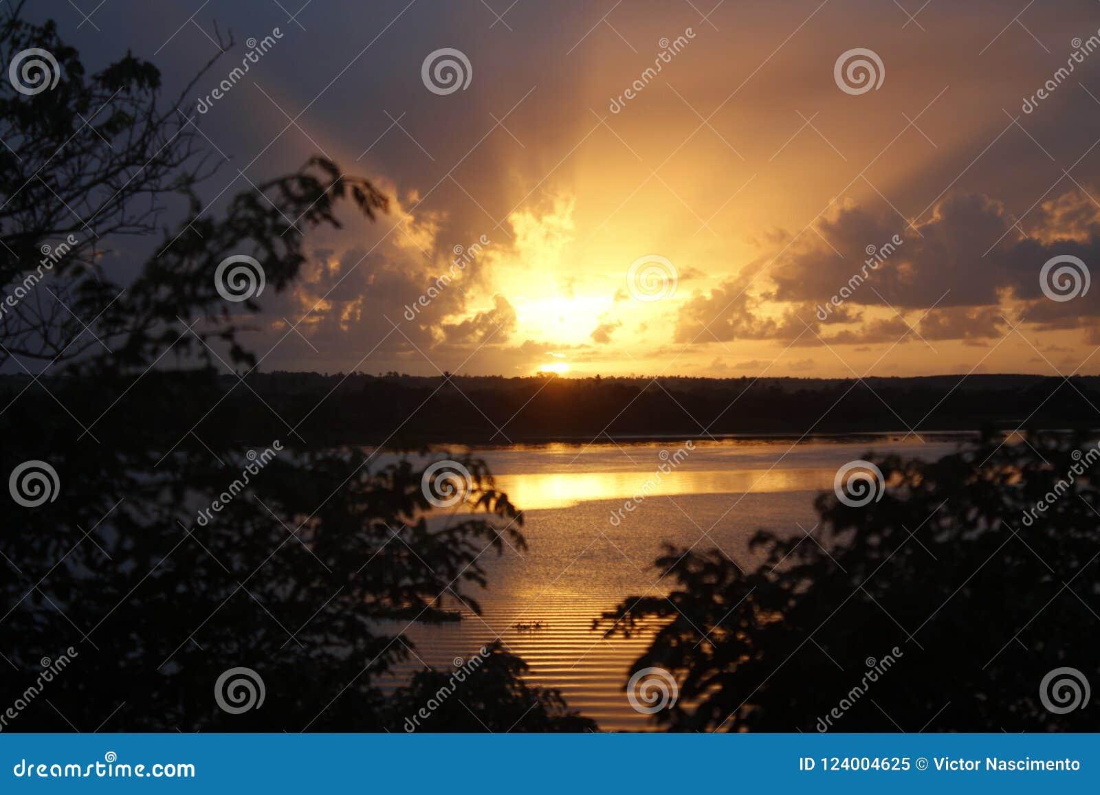 Alba nel sao Francisco River con gli alberi