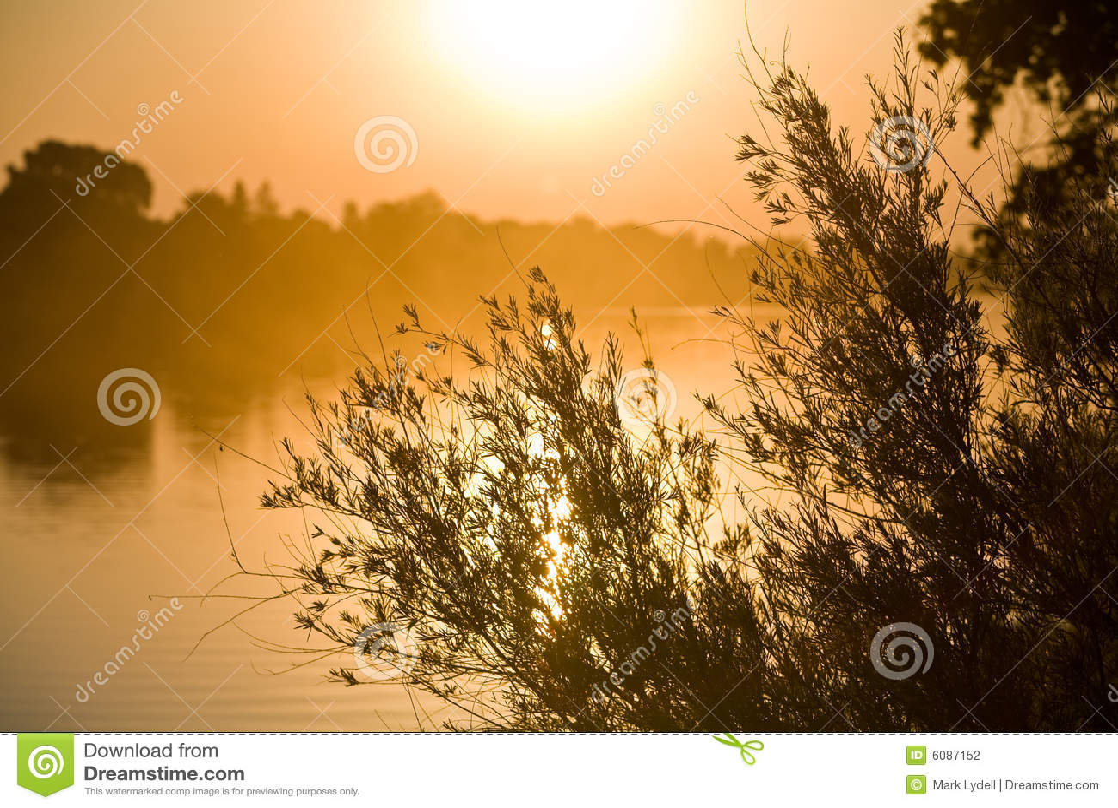 Fotografia stock: alba sopra il fiume di sacramento