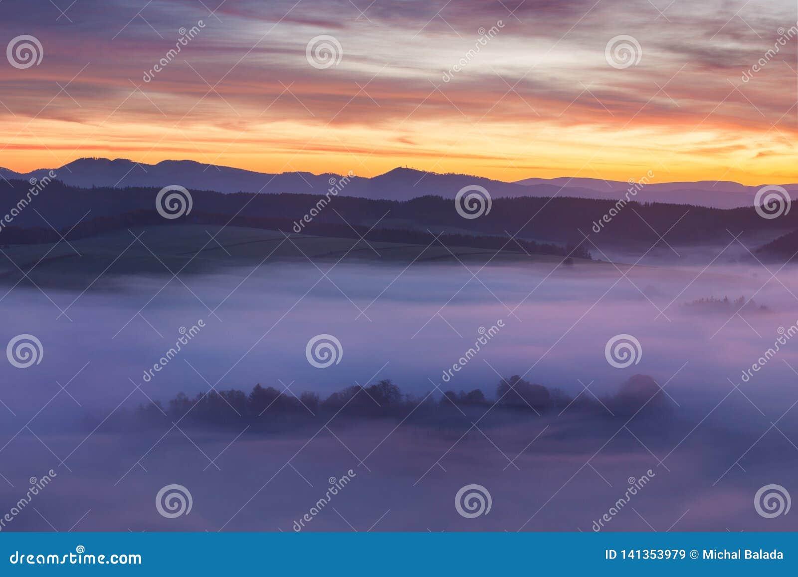 Alba sopra Misty Landscape Vista scenica del cielo nebbioso di mattina con il sol levante sopra Misty Forest Middle Summer Nature