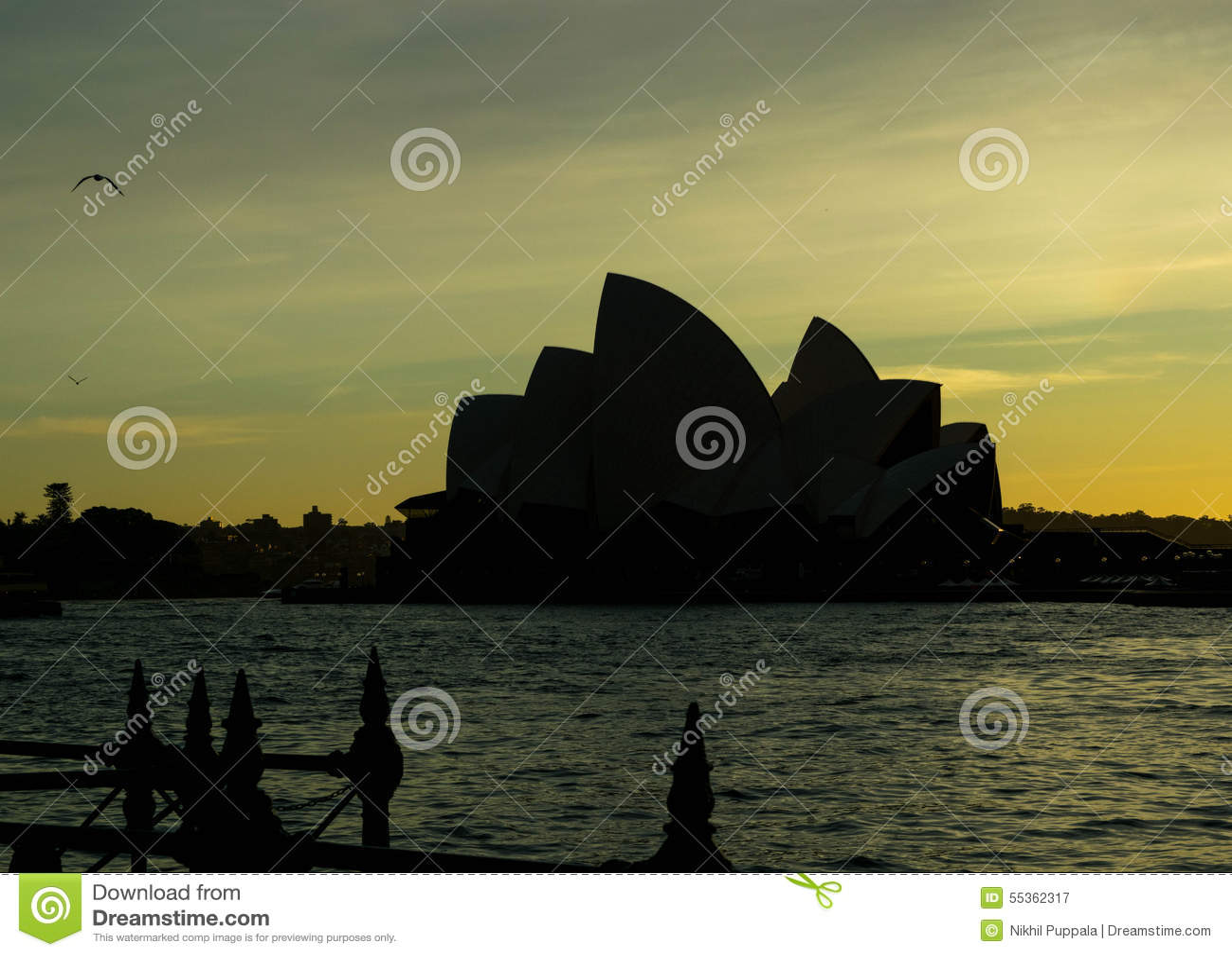 Alba sopra Sydney Harbour