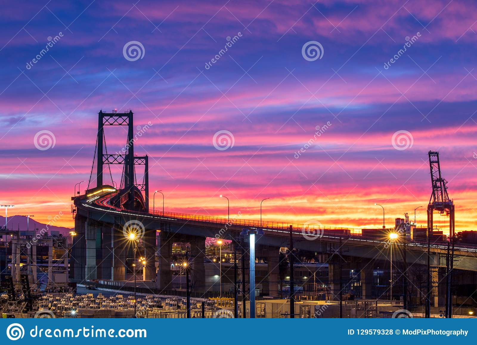 Alba variopinta a Vincent Thomas Bridge in San Pedro, California