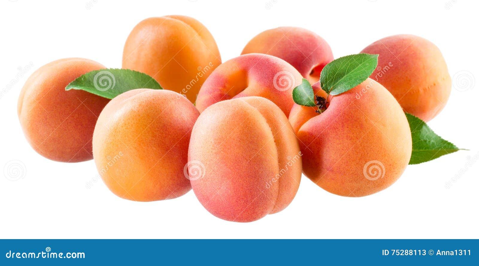 Albaricoques Grupo de frutas maduras aisladas en blanco