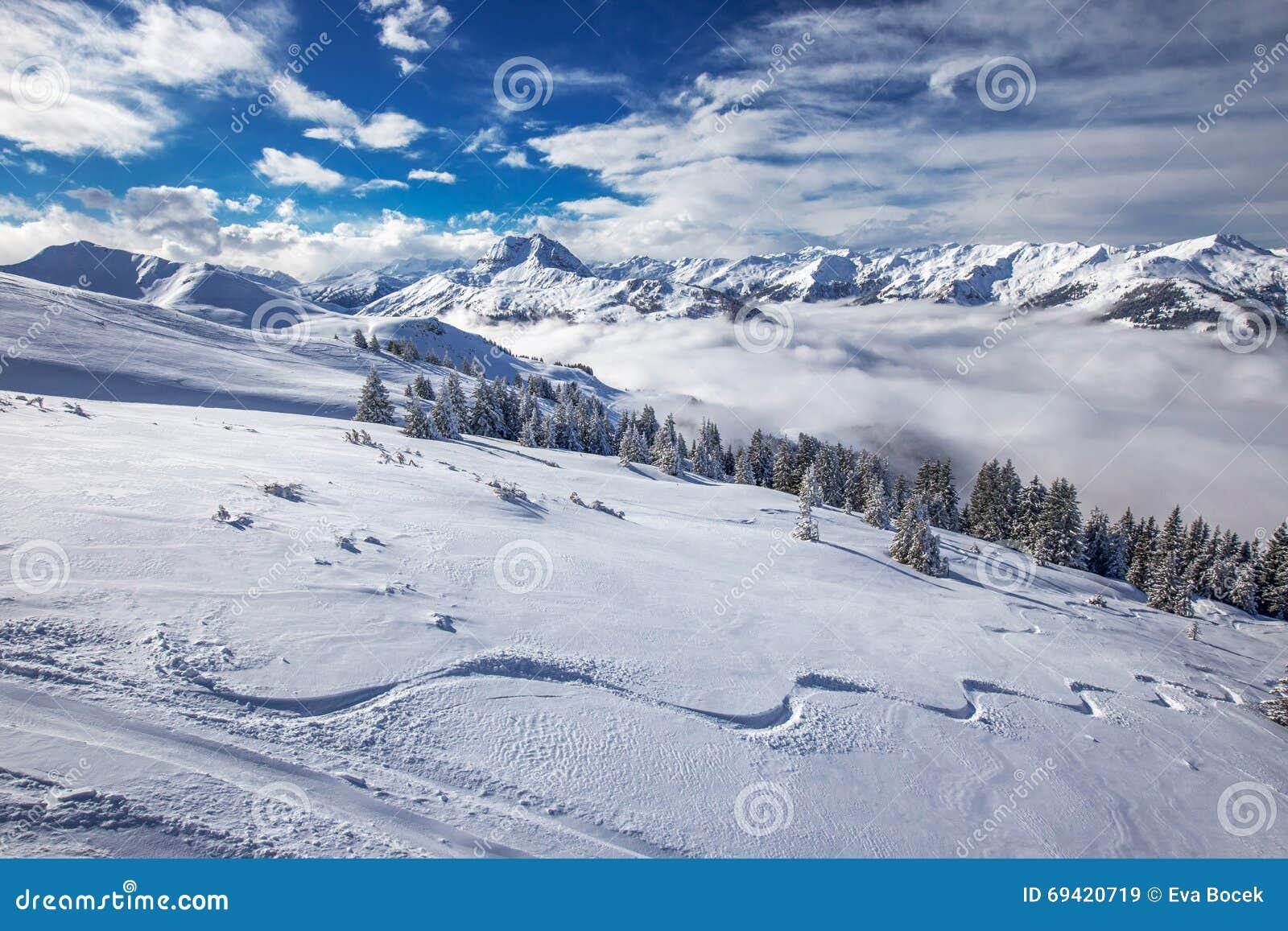 Alberi coperti da neve fresca nelle alpi dell 39 austria for Cabine vicino montagna di sangue