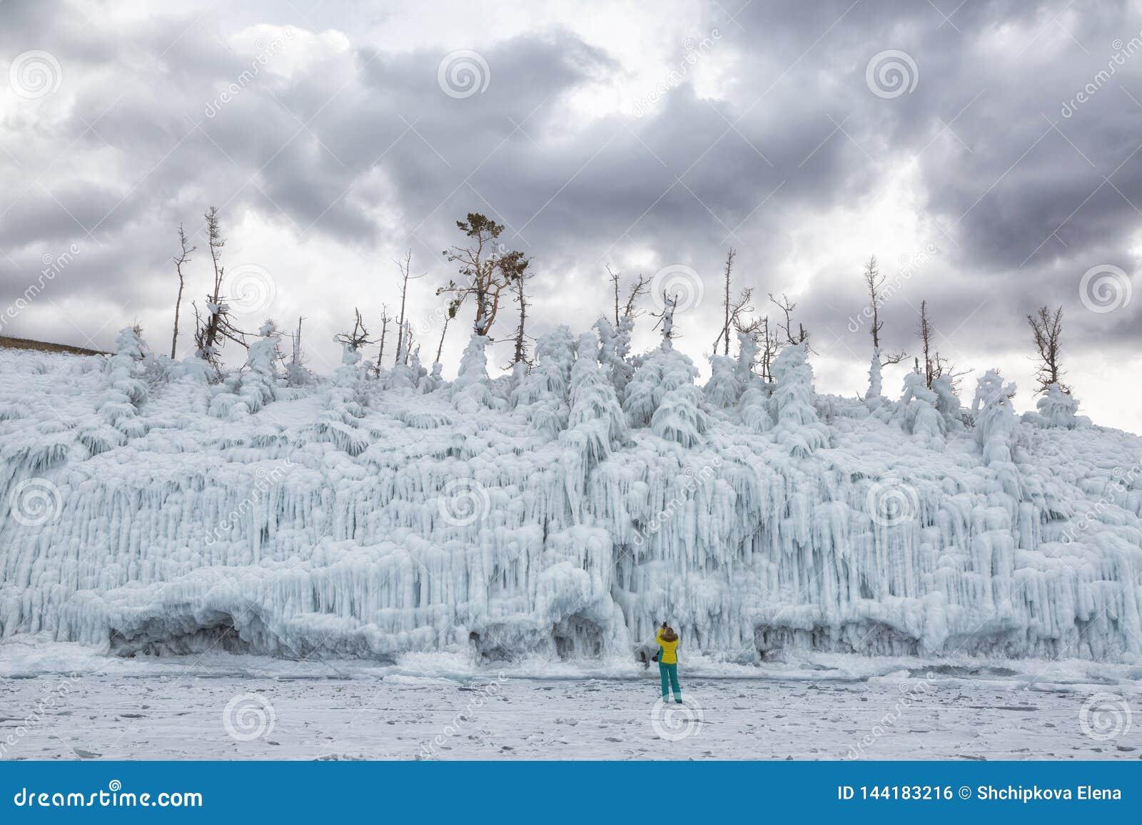 Alberi coperti di ghiaccio La Russia