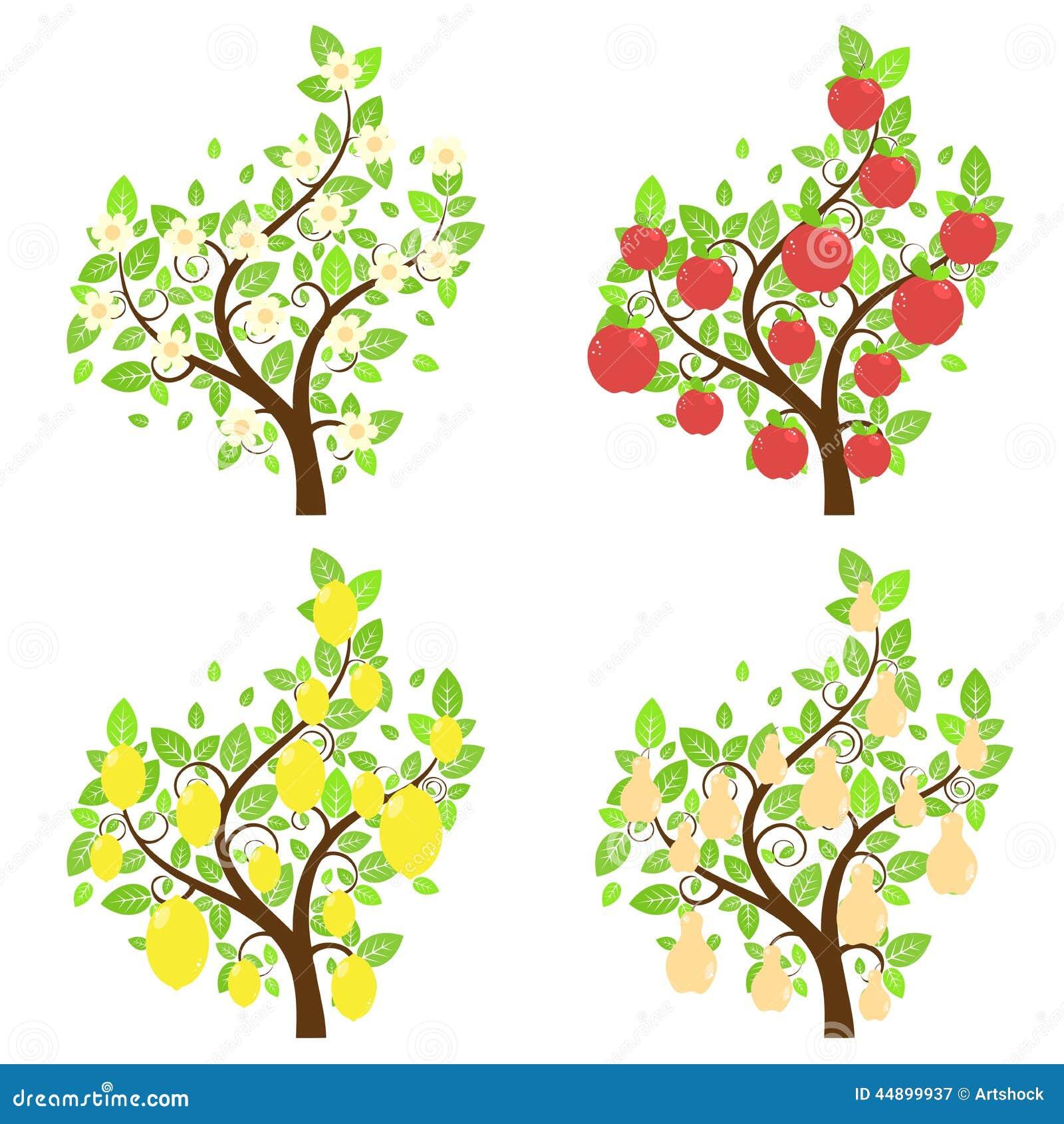 Alberi da frutto stilizzati illustrazione vettoriale for Alberi da frutto prezzi