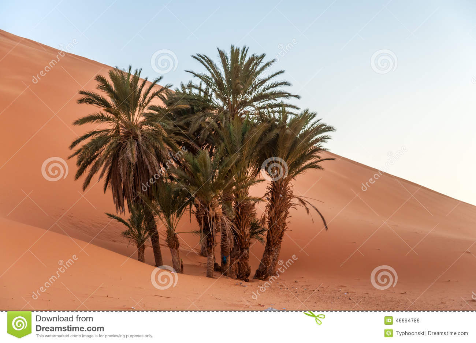 50 dating in palm desert
