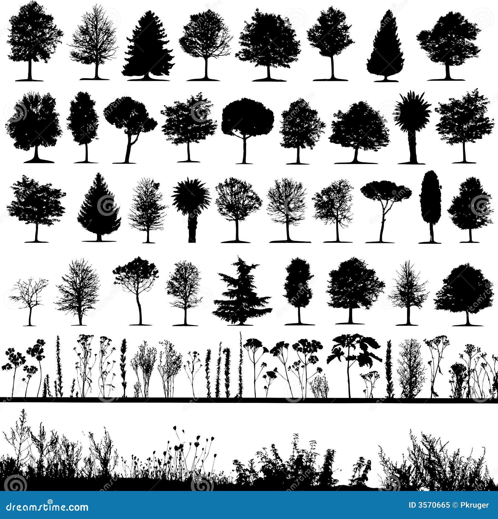 Alberi, erba, vettore della pianta