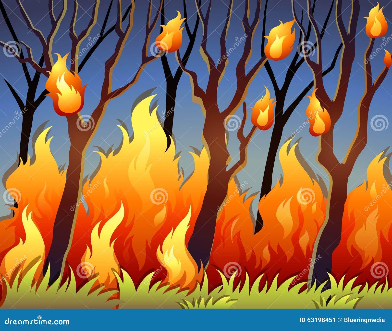 Alberi in foresta su fuoco