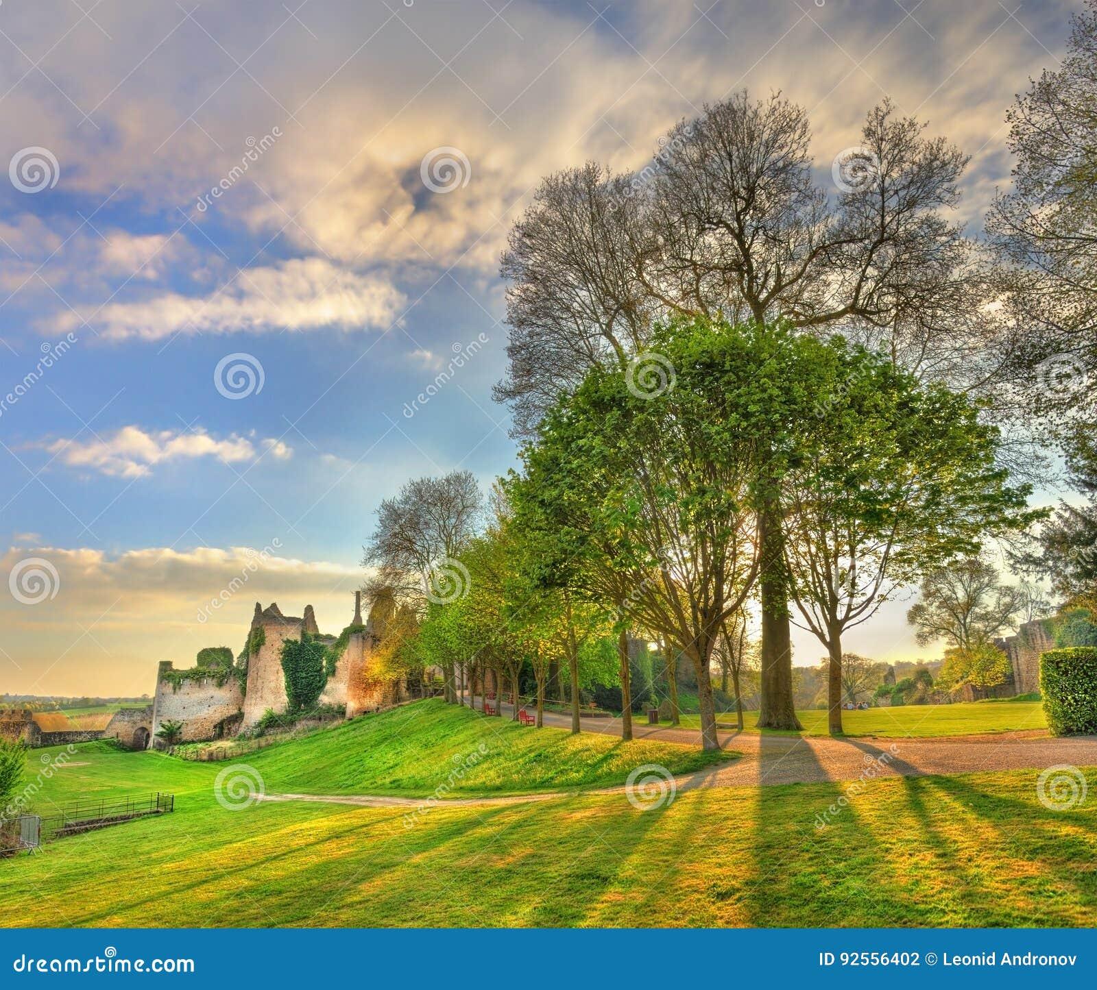 Alberi nel parco al castello de Bressuire france