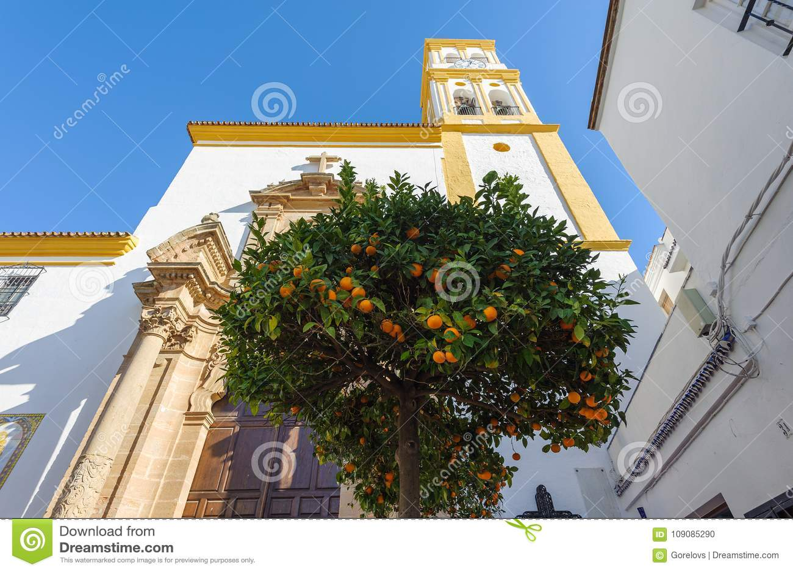 Albero di agrume con le arance e chiesa su un fondo Marbella, Spagna