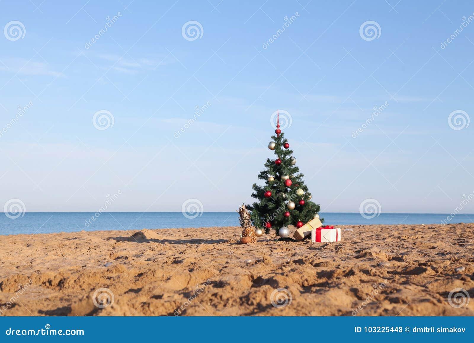 Albero Di Natale Con Il Regalo Della Località Di Soggiorno Tropicale ...