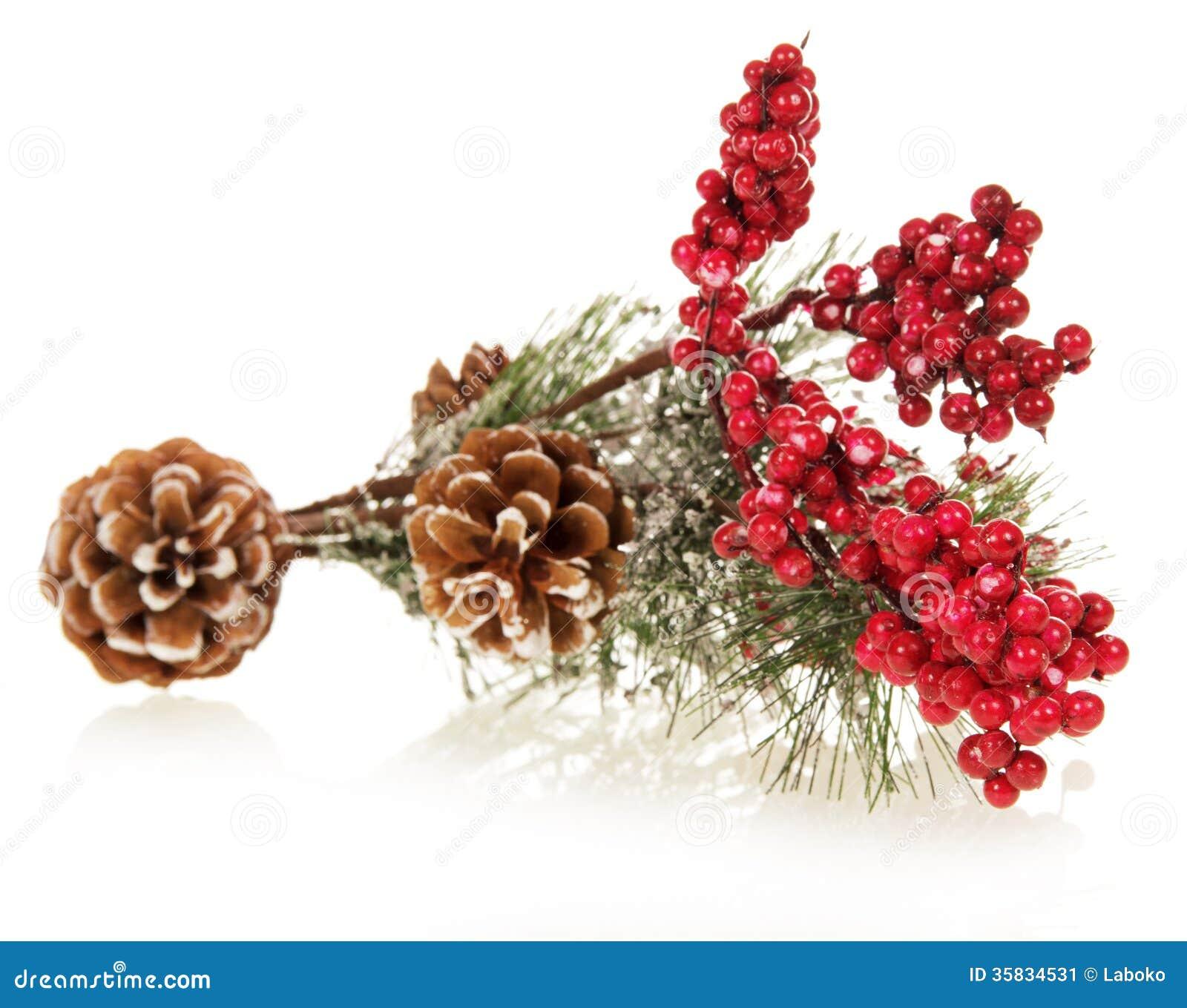 Albero di natale decorato con le pigne e la neve immagine for Albero di natale con pigne