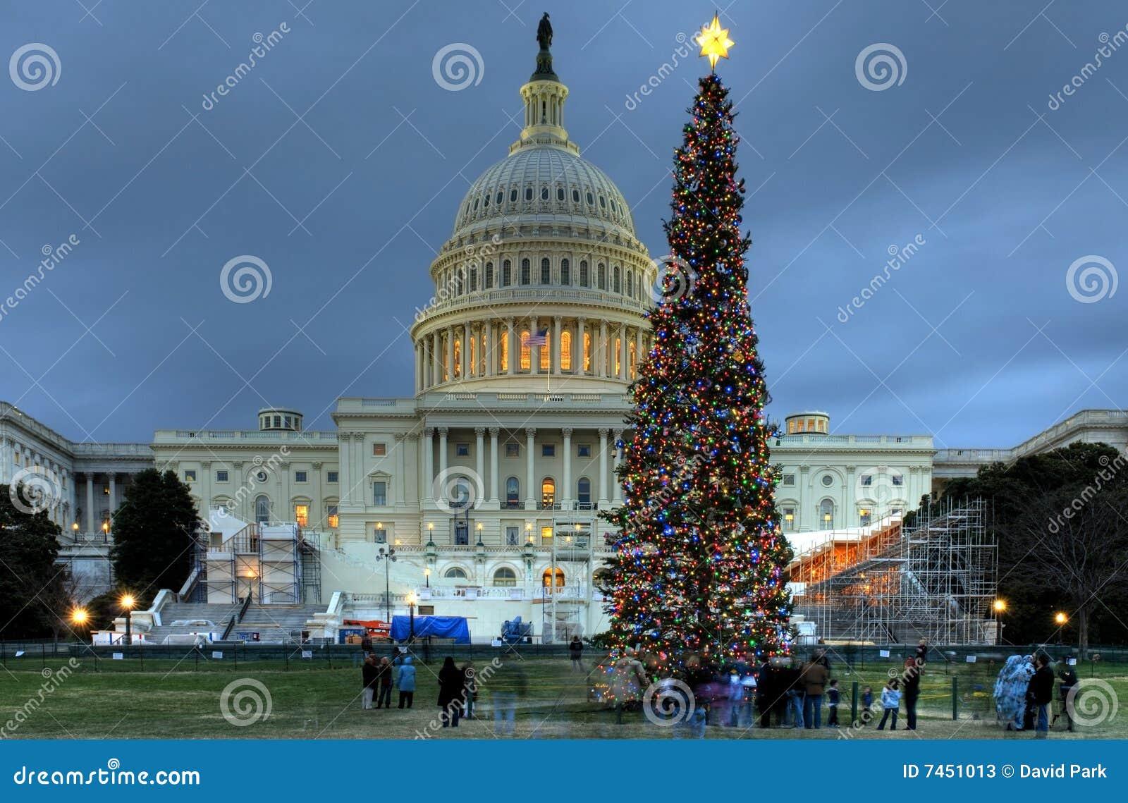 Albero Di Natale Washington.Albero Di Natale Degli Stati Uniti Campidoglio Fotografia Stock Editoriale Immagine Di Washington Santa 7451013