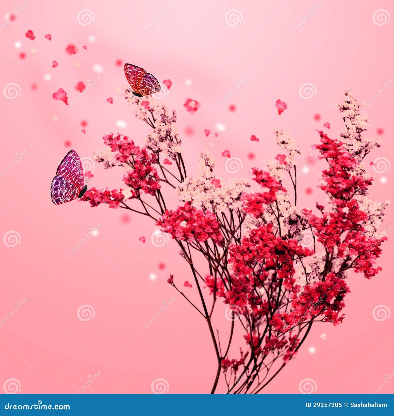 Albero di sakura con le farfalle illustrazione di stock for Sakura albero