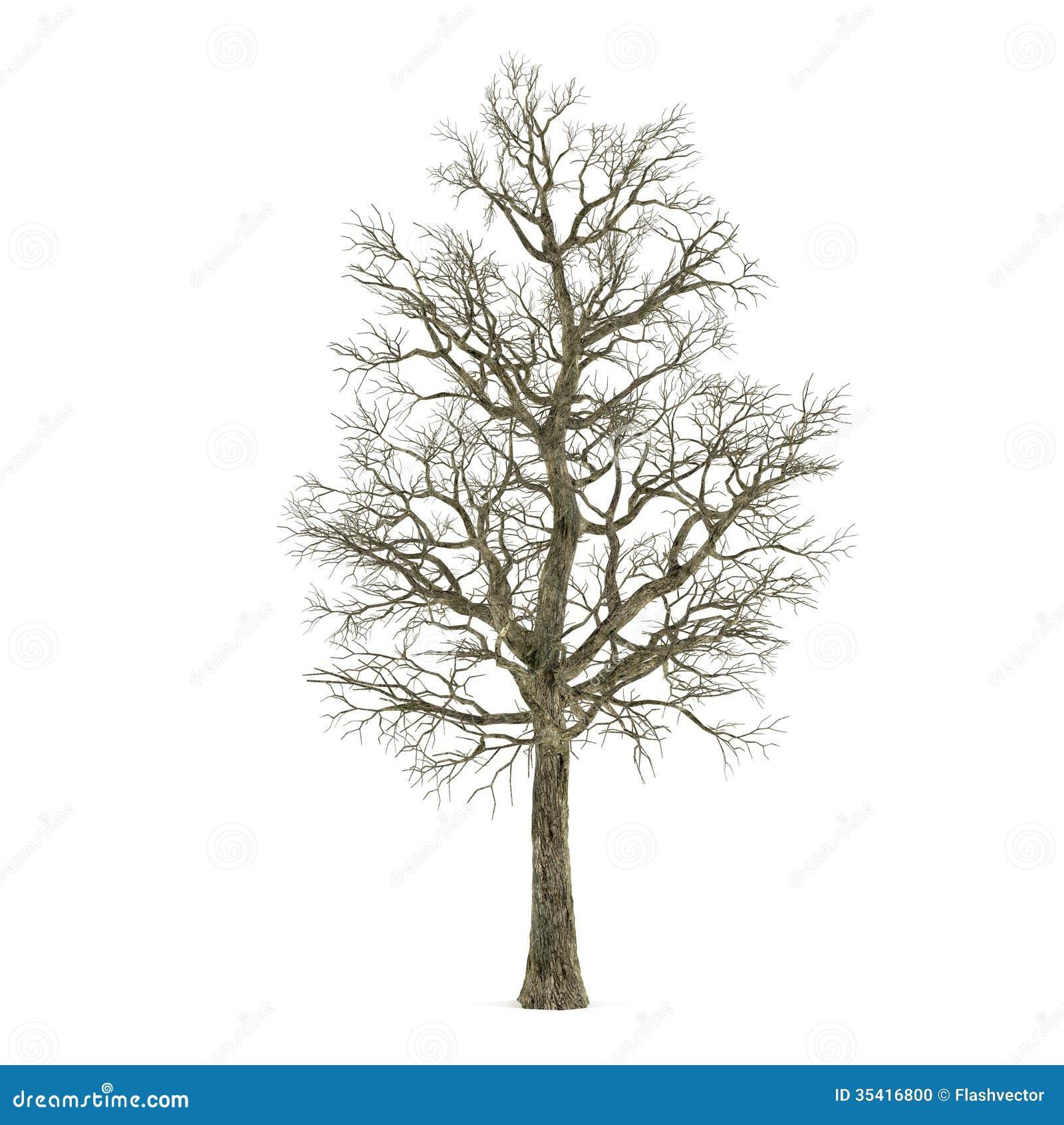 Табурет табуретка своими руками из дерева чертежи