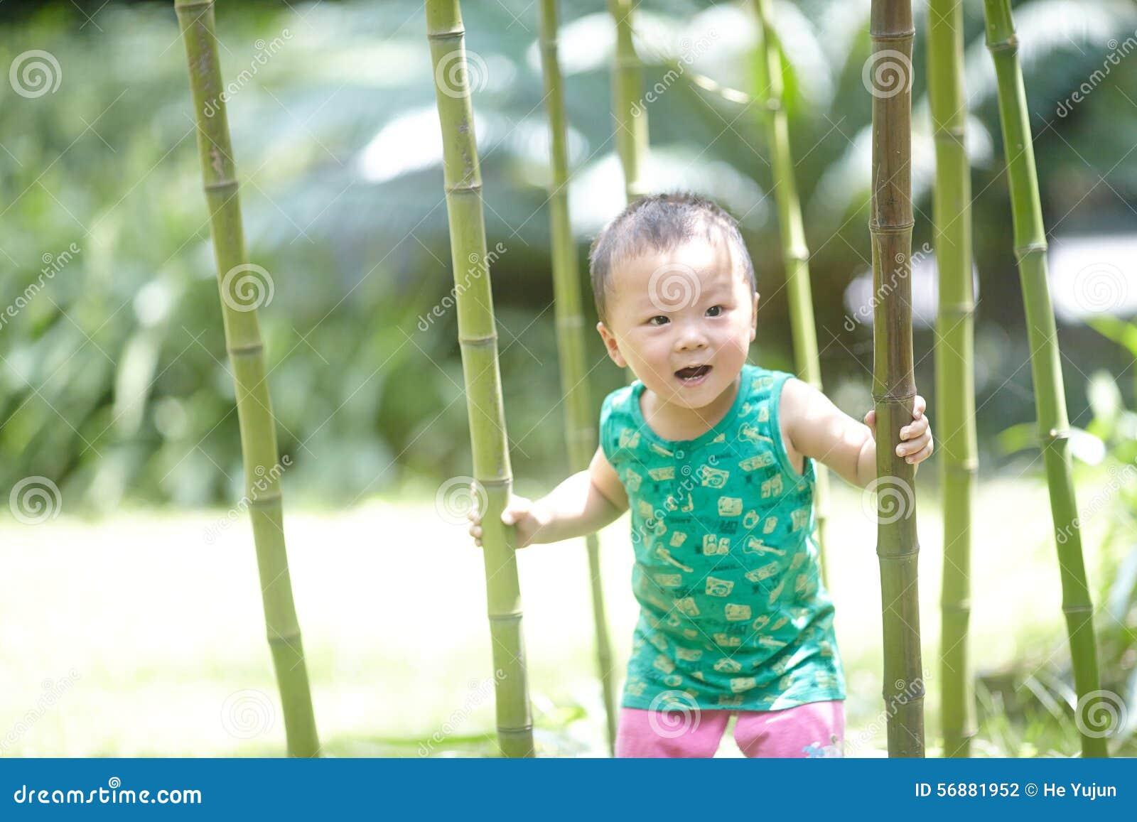 Albero rampicante del neonato