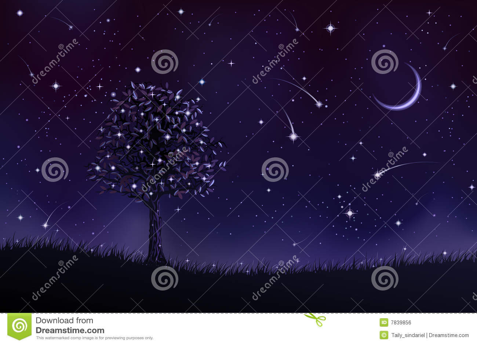 Albero solo di notte