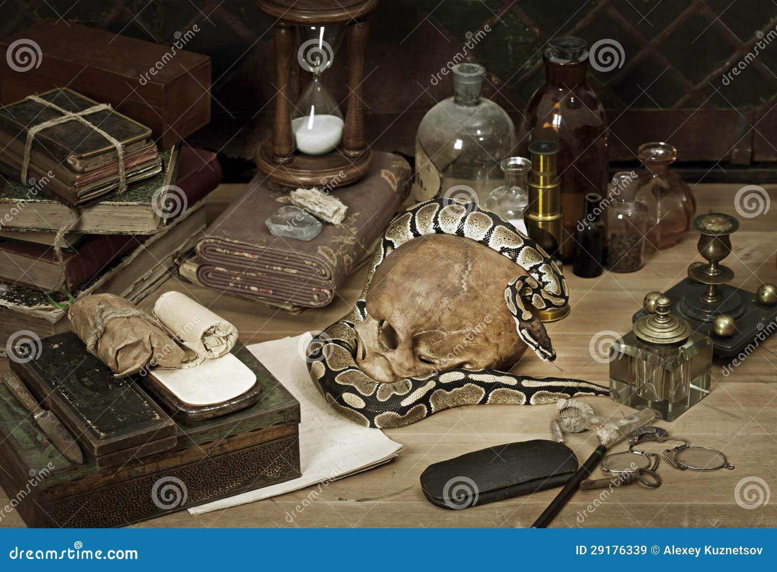 Alchemy still life with Royal Python
