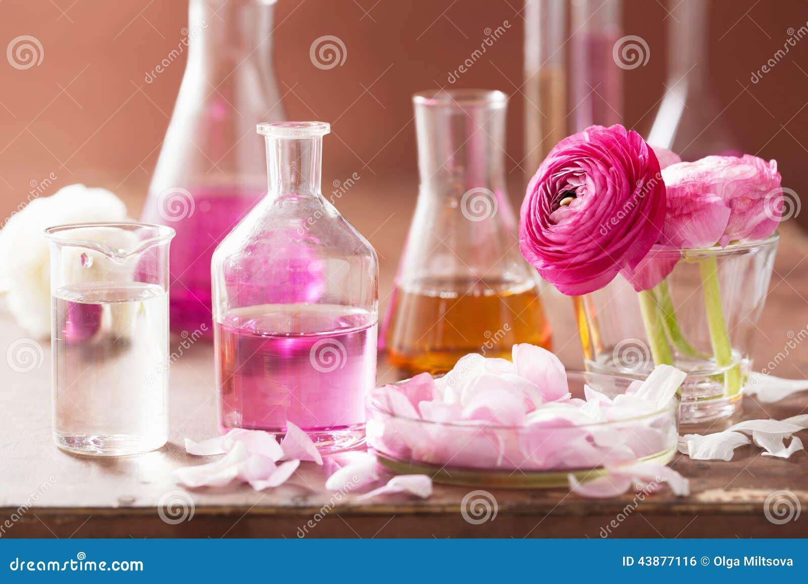 Alchimie und Aromatherapie stellten mit Ranunculusblumen und -flaschen ein