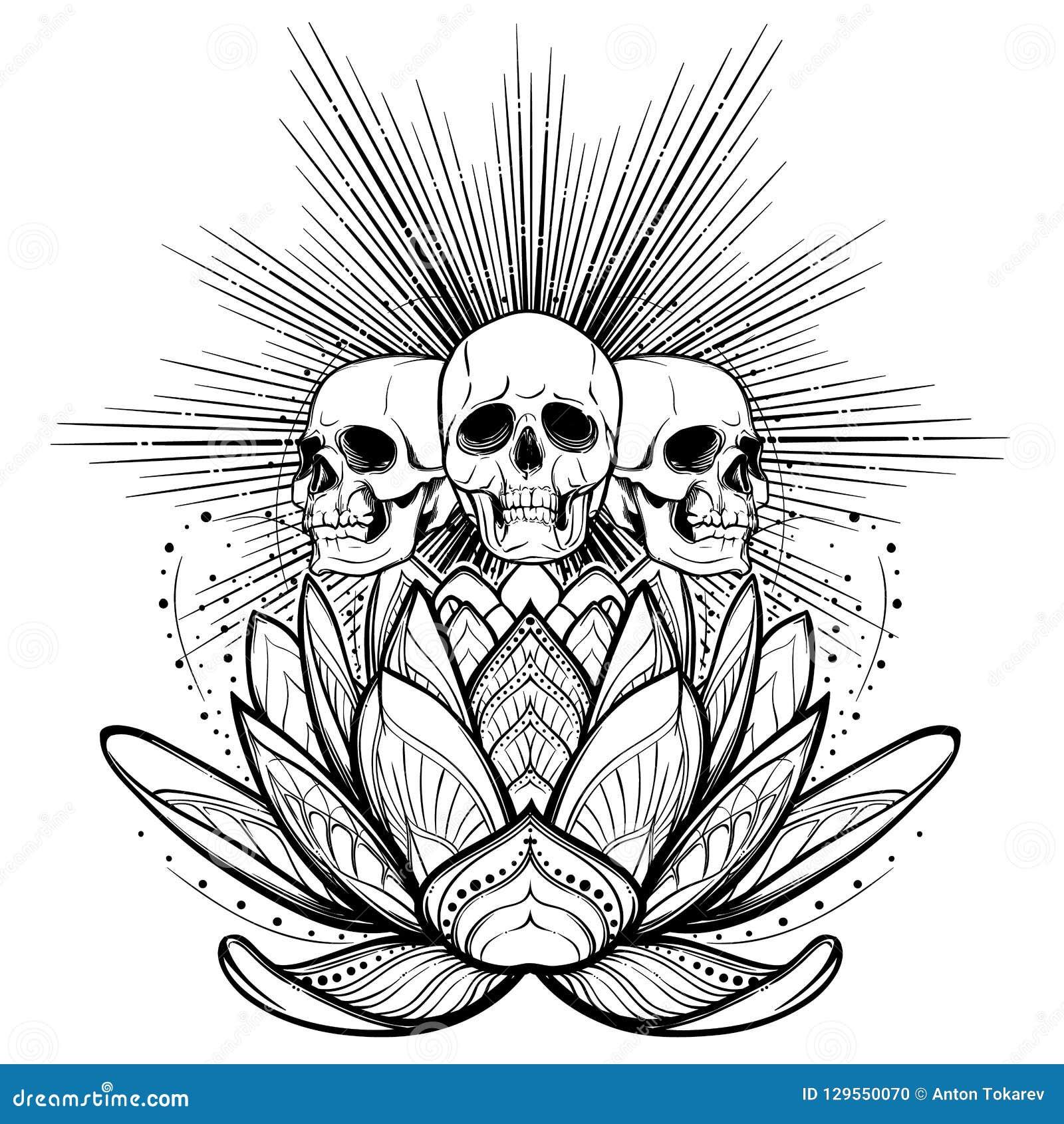 Alcohol De Halloween Cráneos Humanos En Una Flor De Loto Sagrado Con