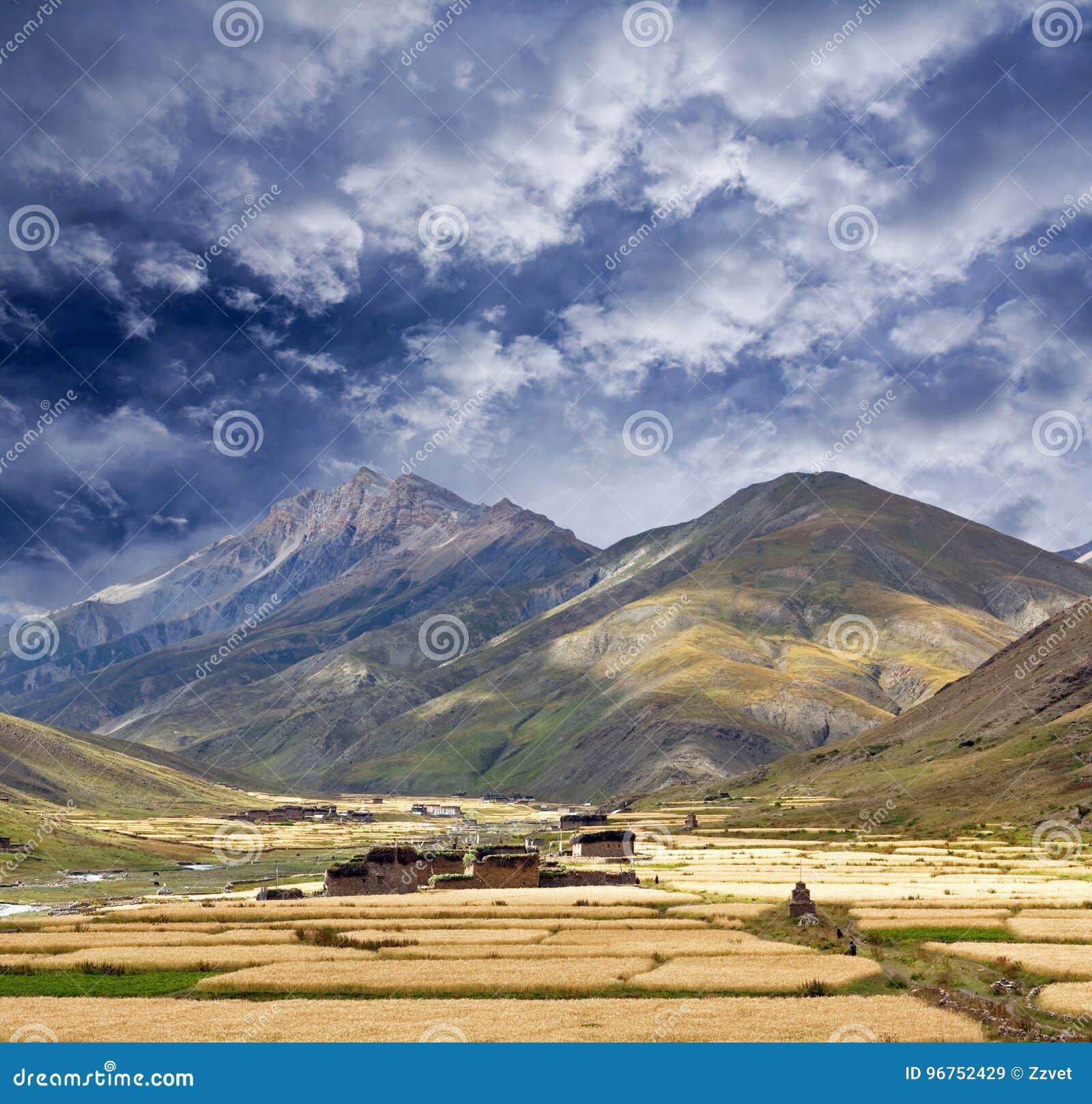 Aldea en Dolpo, Nepal de Dho Tarap