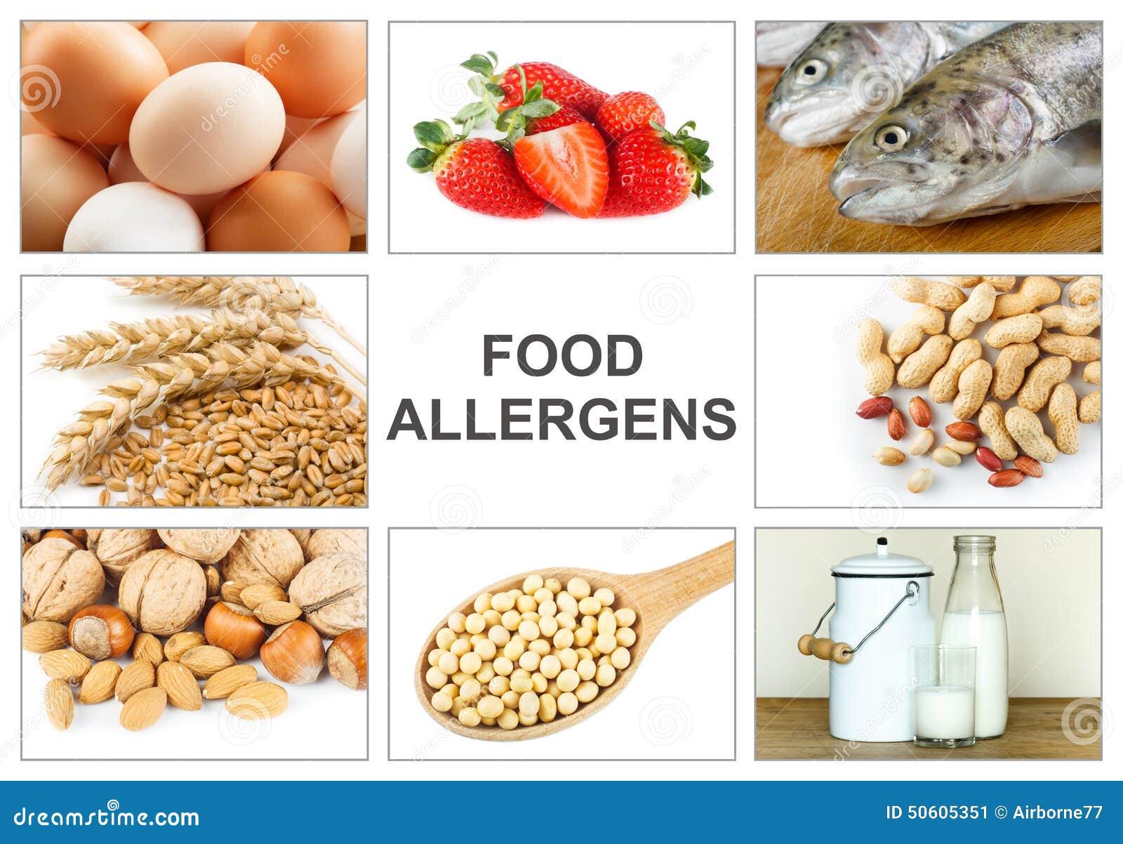 Alergii jedzenia pojęcie
