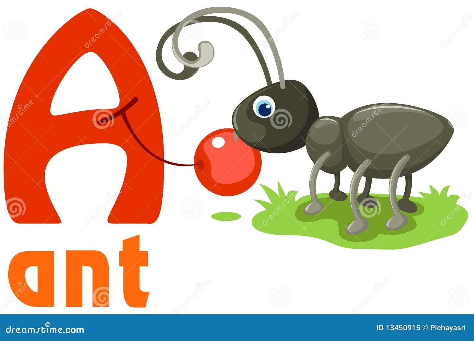 Alfabeto animal A
