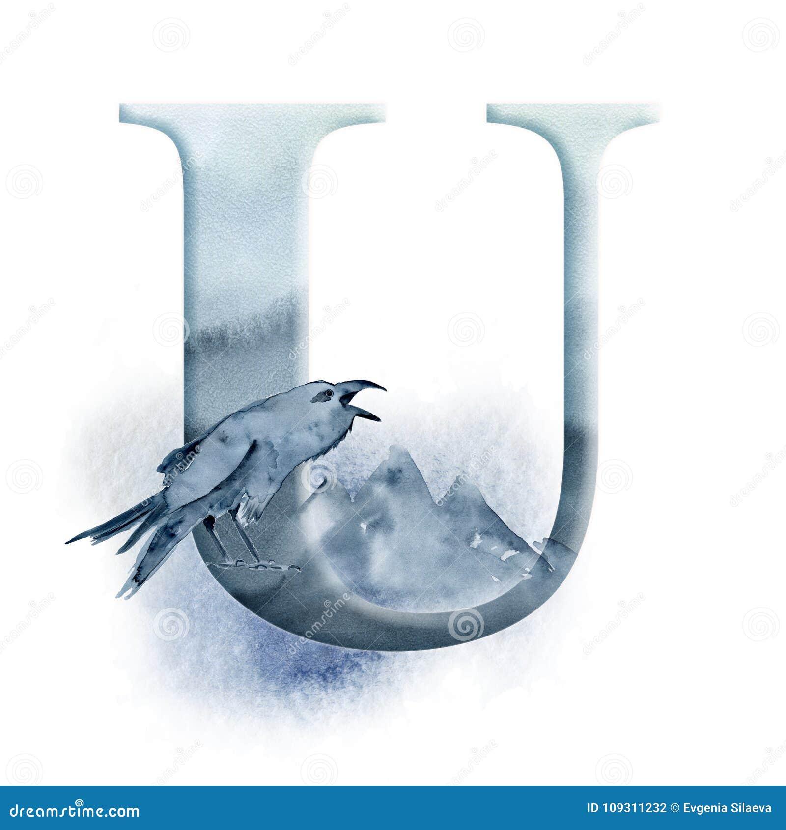 Alfabeto floral da aquarela Projeto da letra inicial U do monograma com o corvo, o corvo e a montanha tirados mão