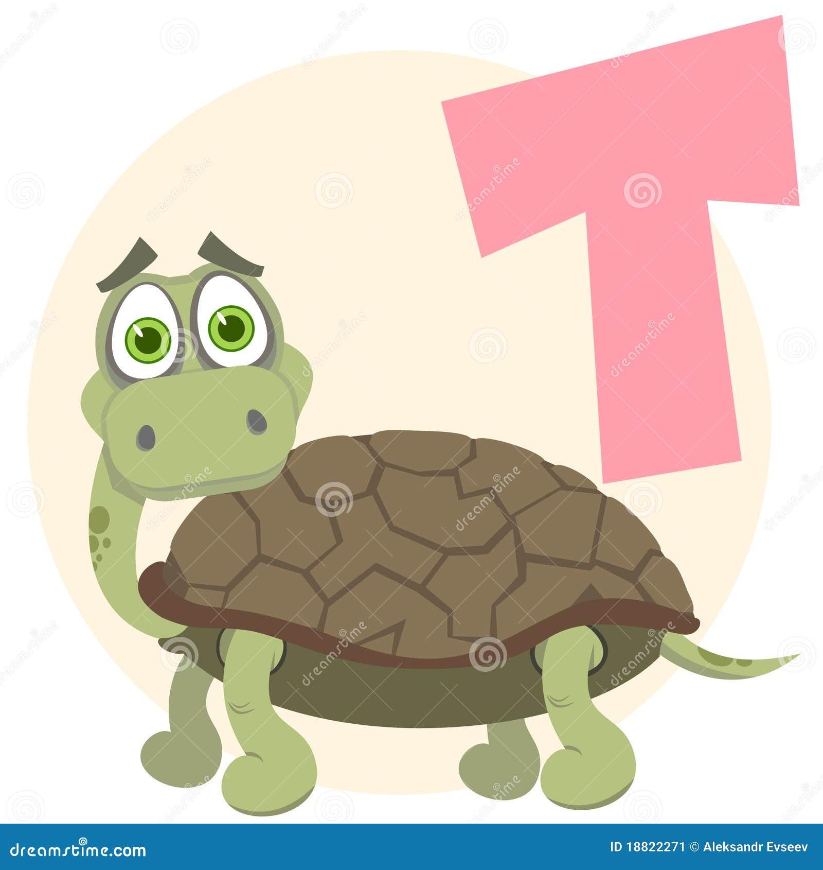 Alfabeto inglese tartaruga immagine stock immagine - Soleggiato in inglese ...