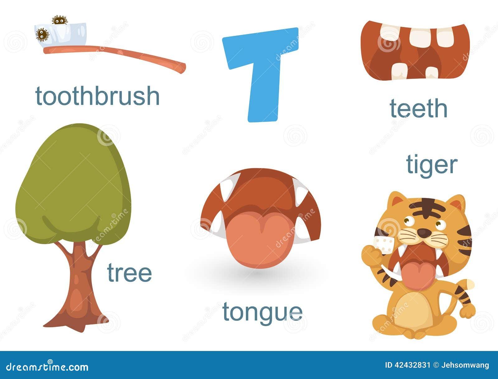 Alfabeto T
