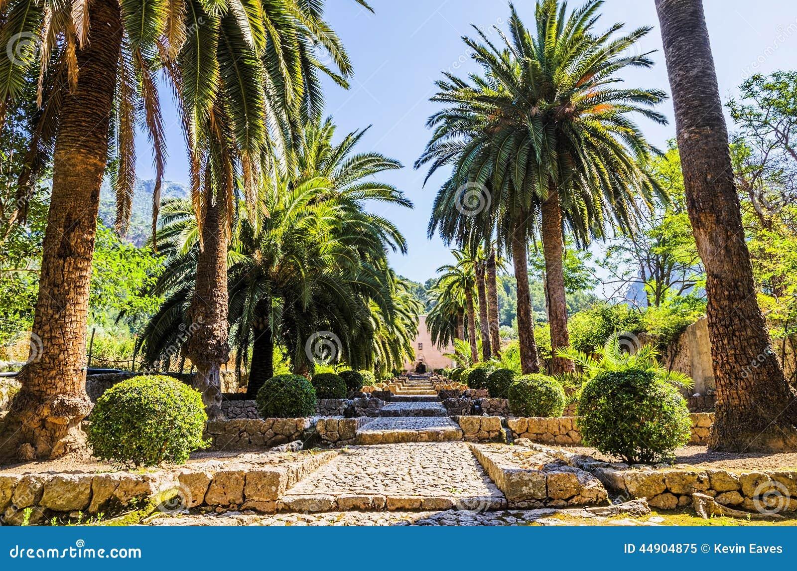 Alfabia gardens stock image image of flower landscape for Jardines mallorca