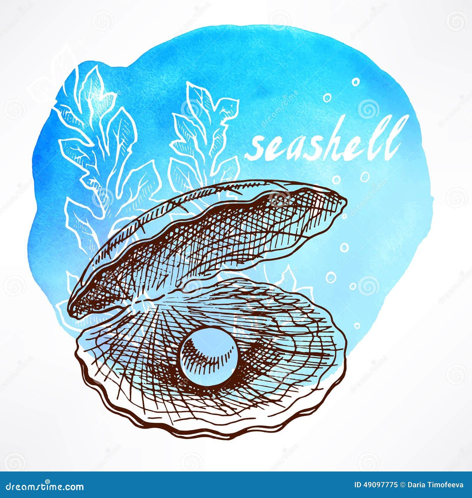 Alga e coperture con la perla