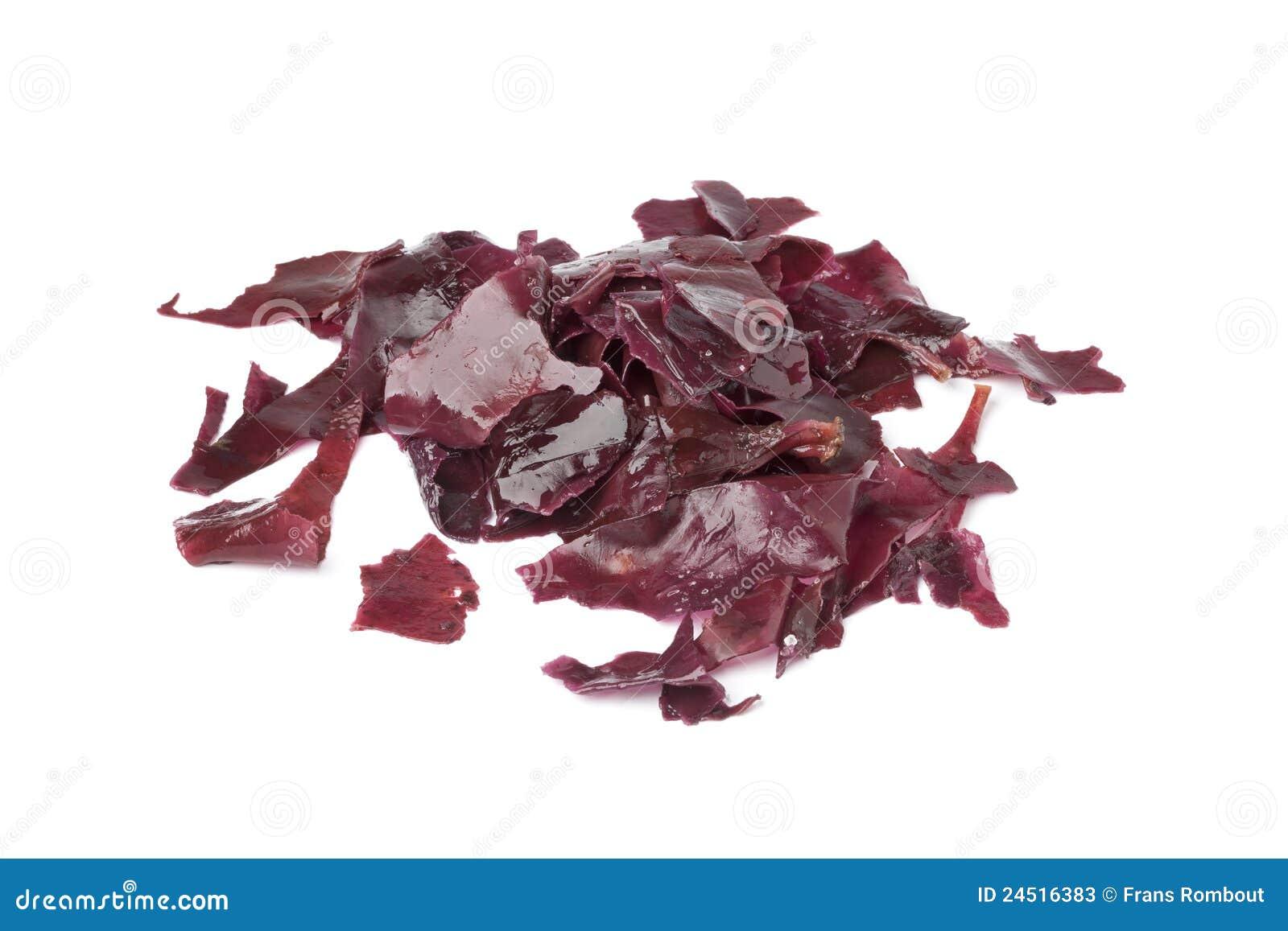Alga marina salada de Dulse