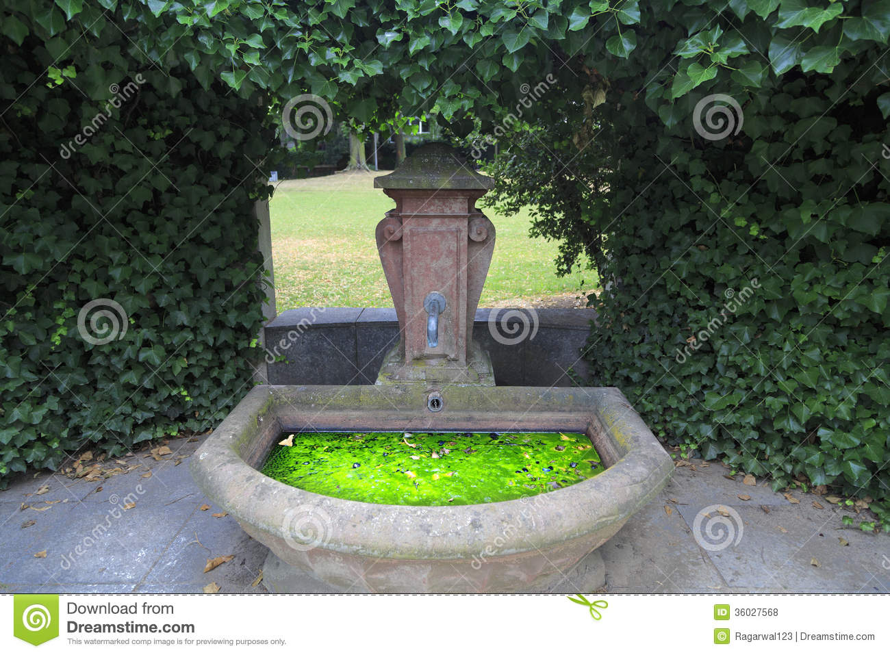 algae grow in a water basin frankfurt germany royalty free stock photos image 36027568. Black Bedroom Furniture Sets. Home Design Ideas