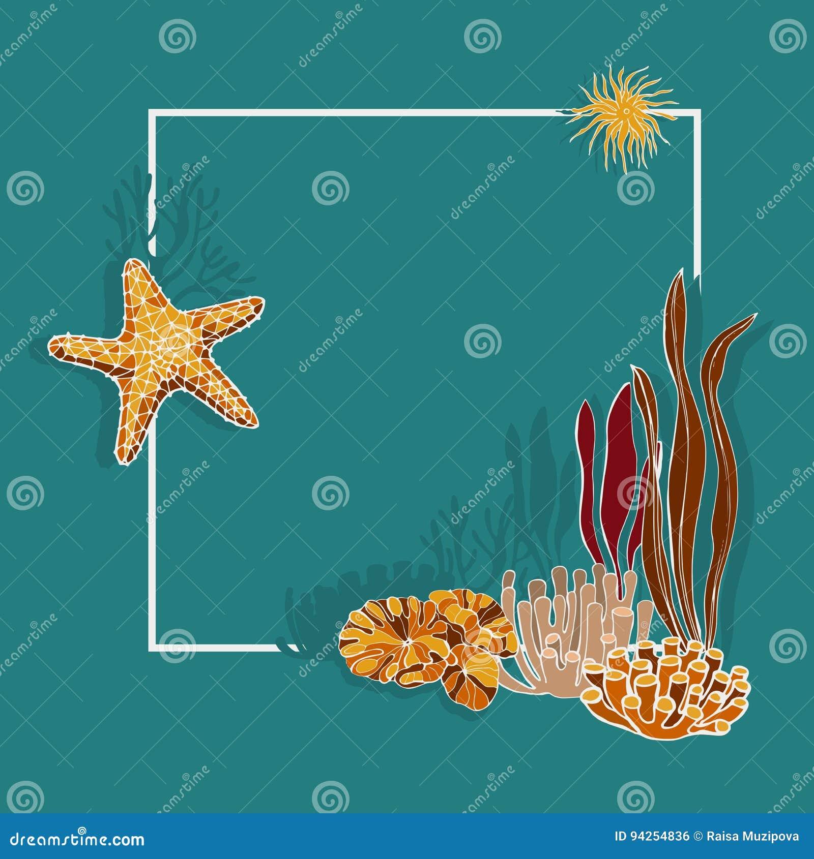 Alghe Coralli E Stelle Marine Fondo Di Vettore Illustrazione Di