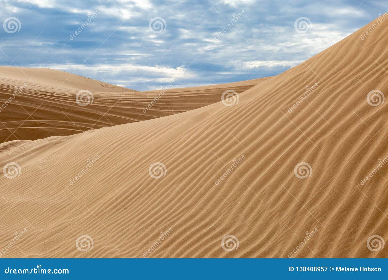 Algodones Dunes, California Stock Image   Image of sand, horizon ...
