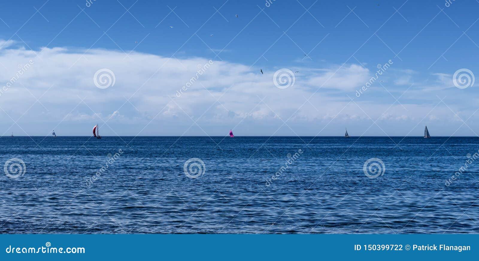 Algunos yates hacia fuera en un horizonte español