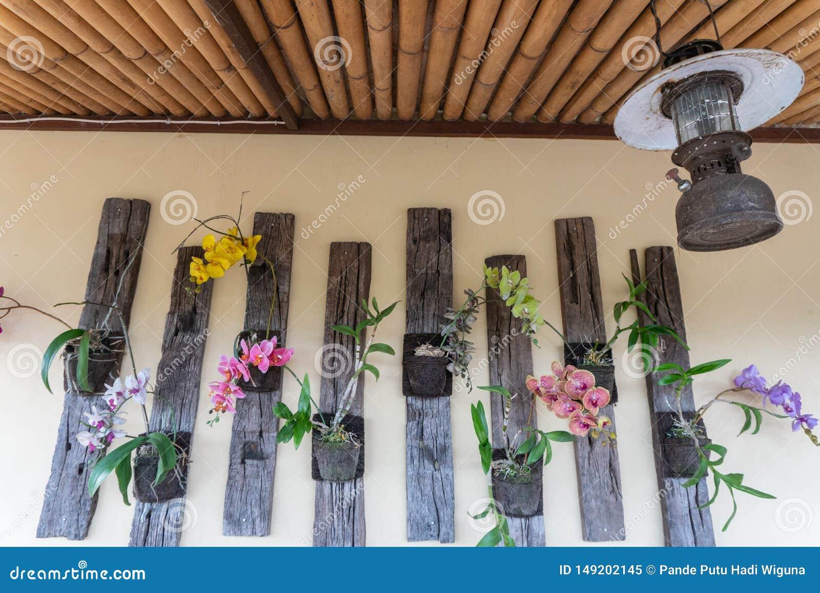 Alguns flores da orqu?dea e tipos coloridos de decora??es da parede em um restaurante em Ubud, Bali