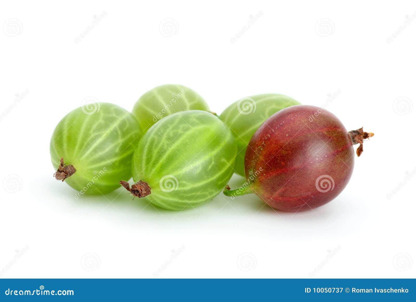 Alguns gooseberries verdes e vermelhos