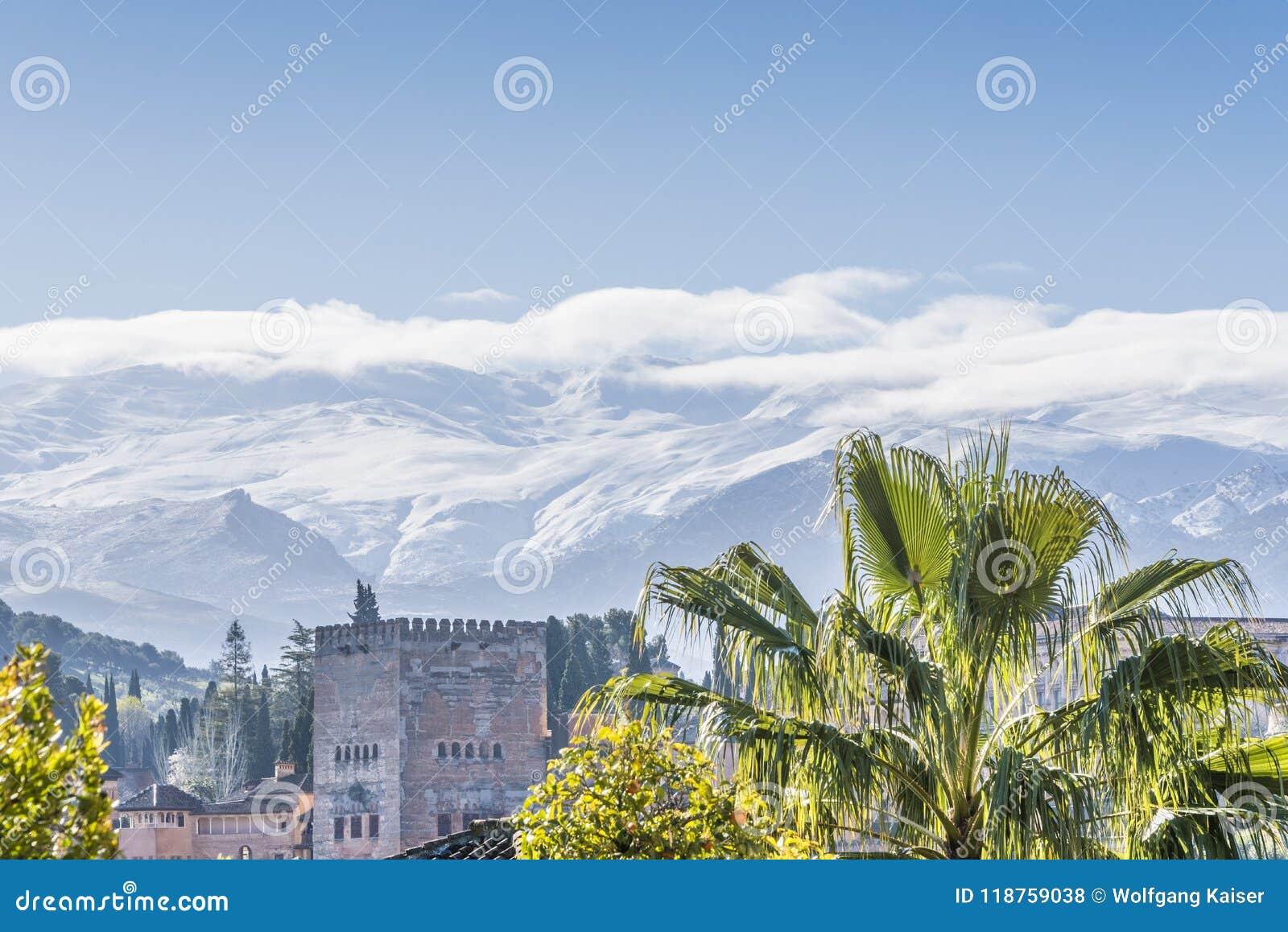 Alhambra met palm en de witte bergen van Nevada