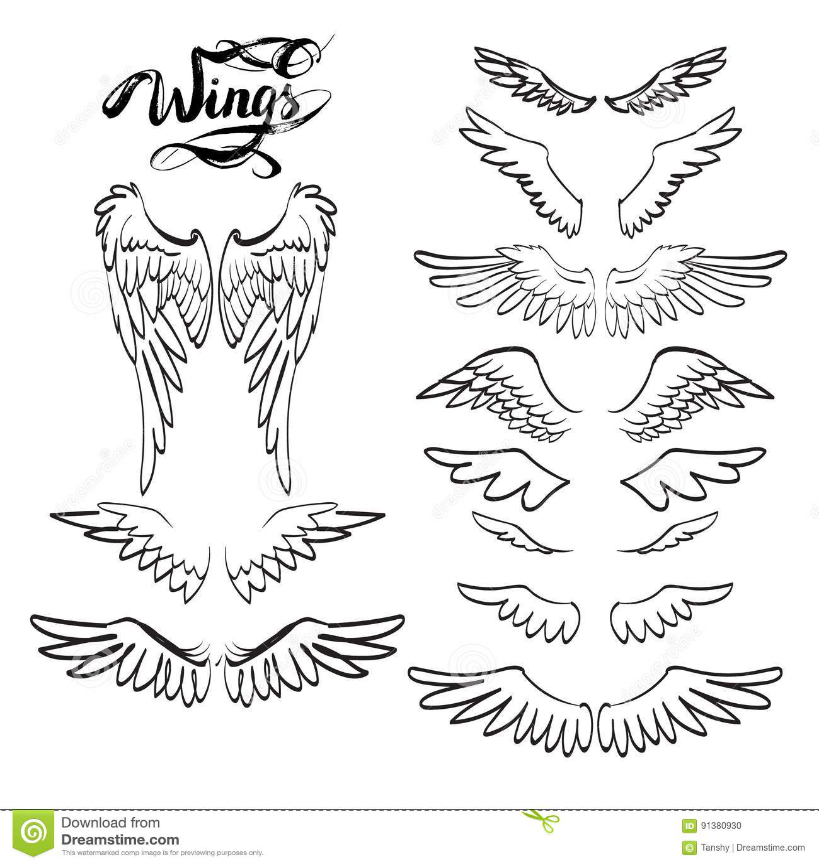 Ali Di Angelo Iscrizione Disegno Illustrazione Di Stock