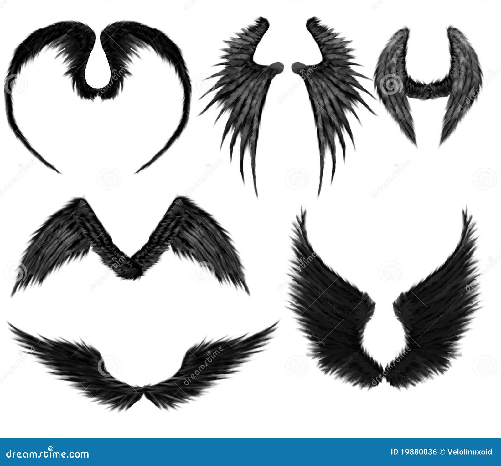 Ali Pipistrello Disegno
