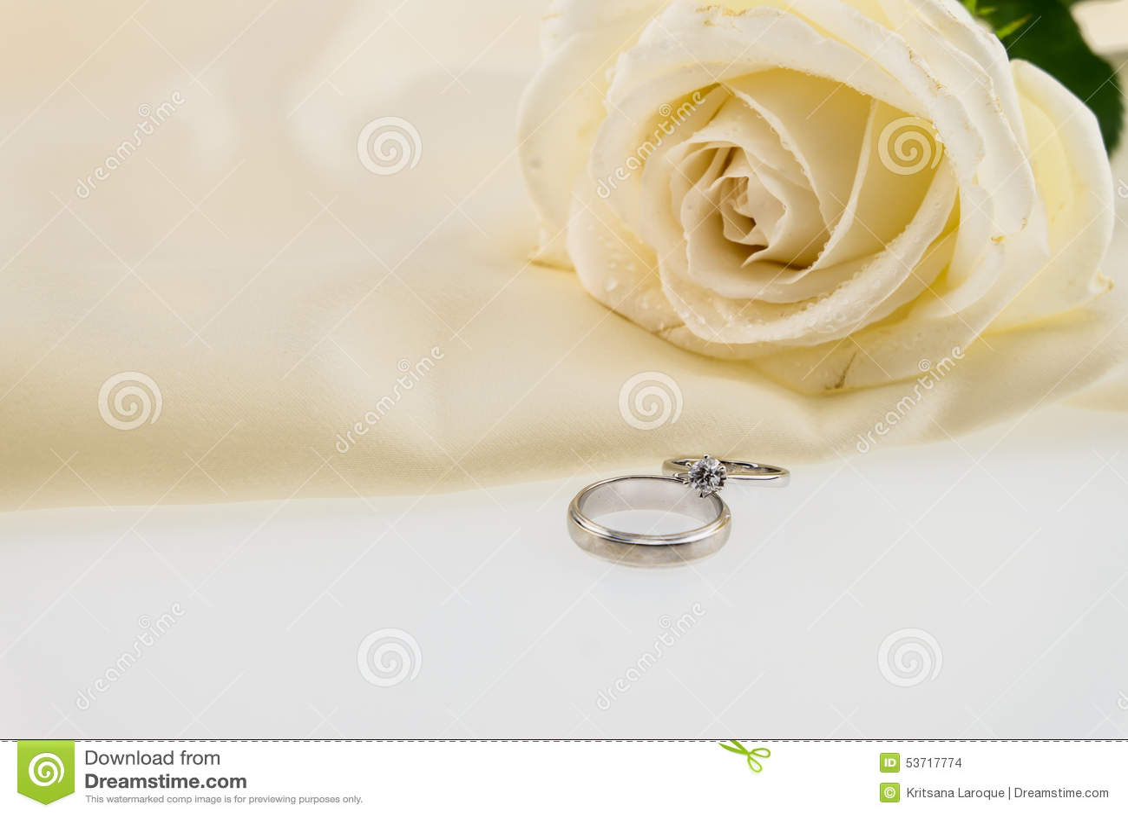 Aliança De Casamento E Rosa Do Branco No Cetim Da Seda Do Marfim ... b10f78985ce2e