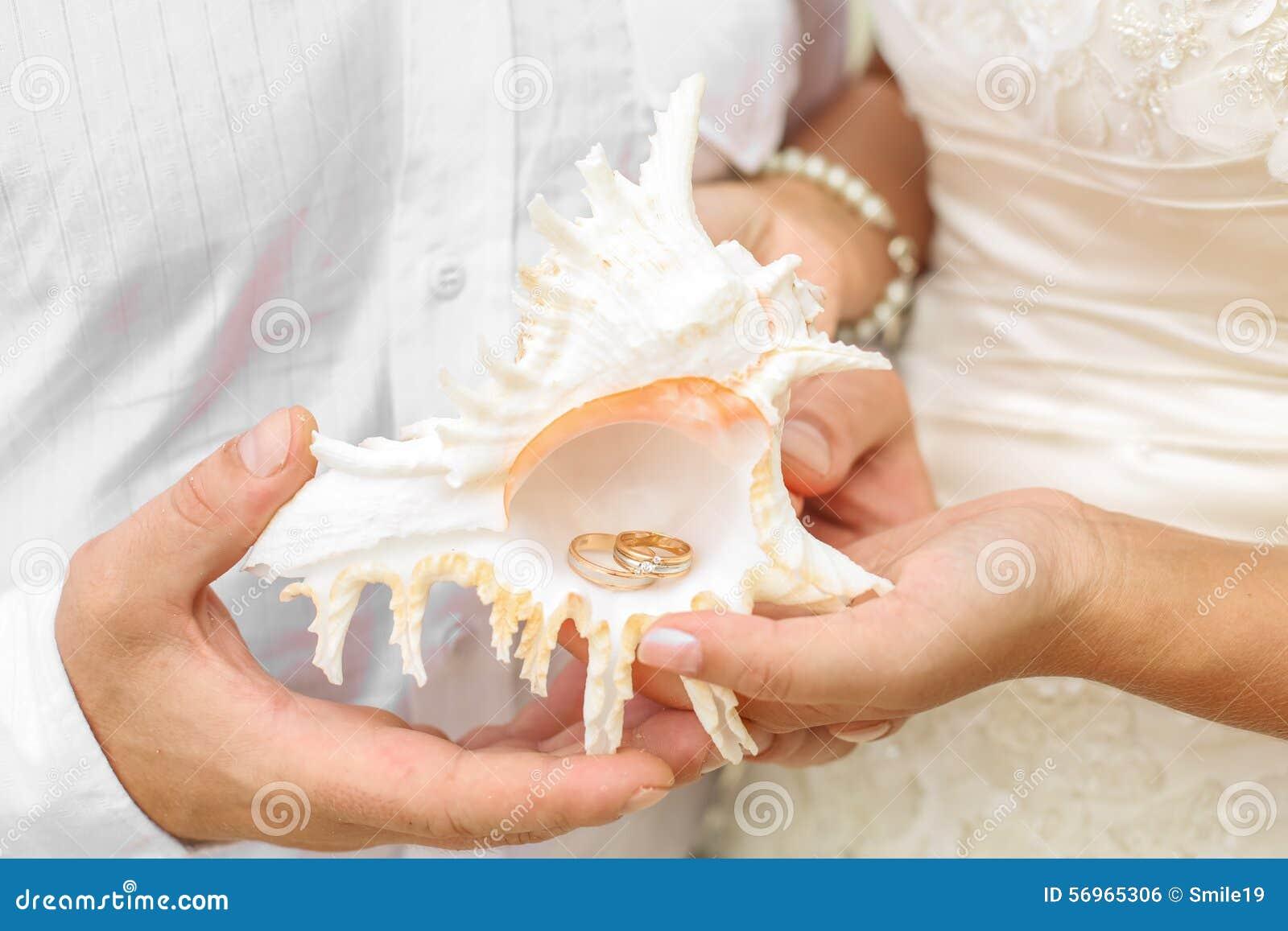 Alianças de casamento dentro de uma concha do mar