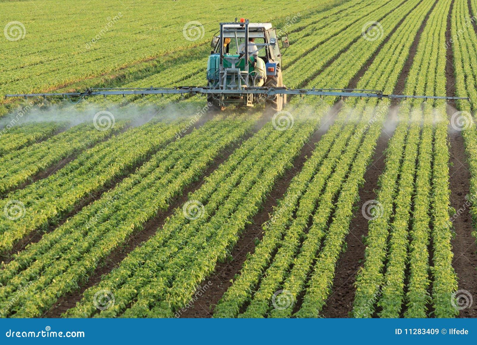 Alimentador de cultivo