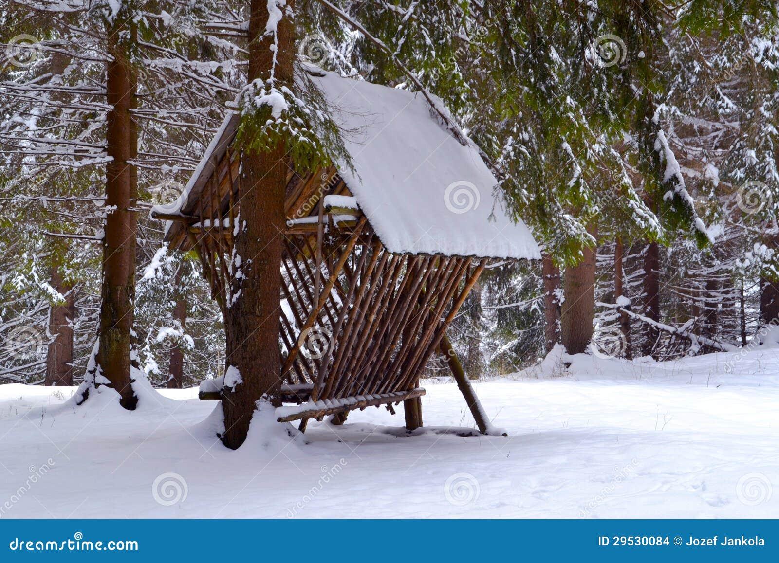 Alimentador de madeira para animais selvagens na floresta nevado
